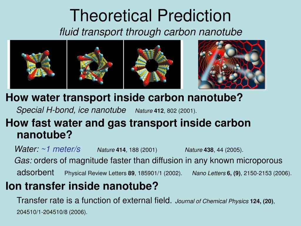 Theoretical Prediction