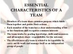 essential characteristics of a team