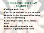 guidelines for team leaders