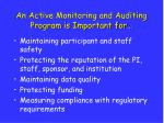 an active monitoring and auditing program is important for