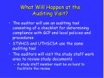 what will happen at the auditing visit