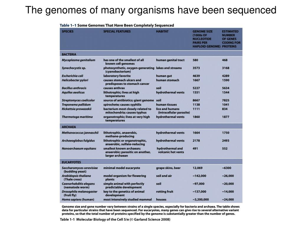 The genomes of many organisms have been sequenced