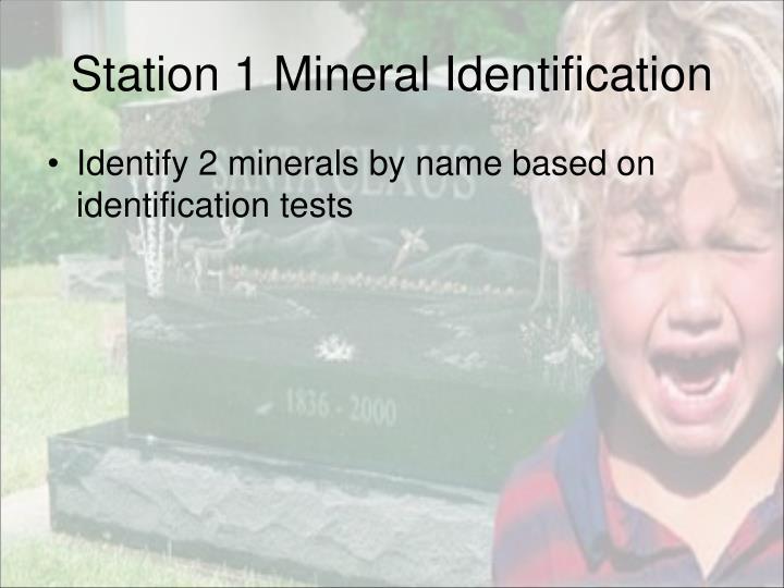 Station 1 Mineral Identification