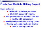 fresh cow multiple milking project