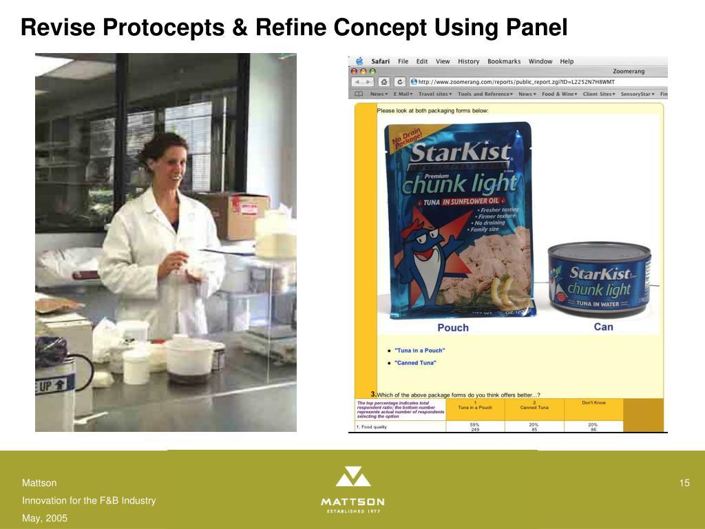 Revise Protocepts & Refine Concept Using Panel