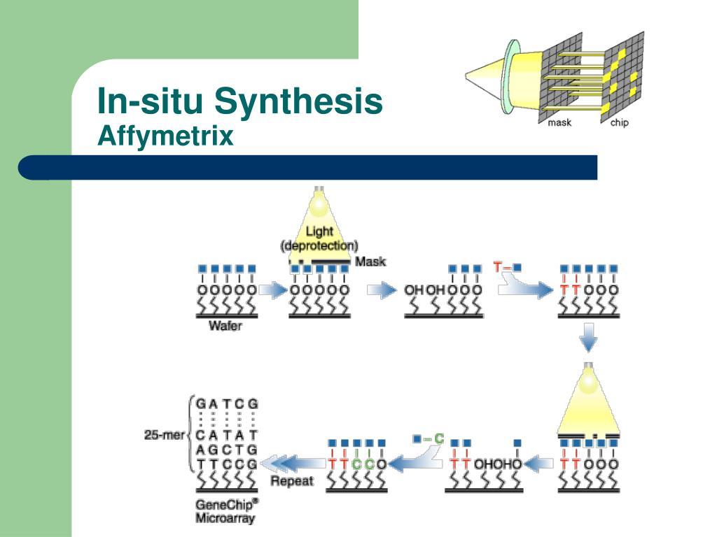 In-situ Synthesis