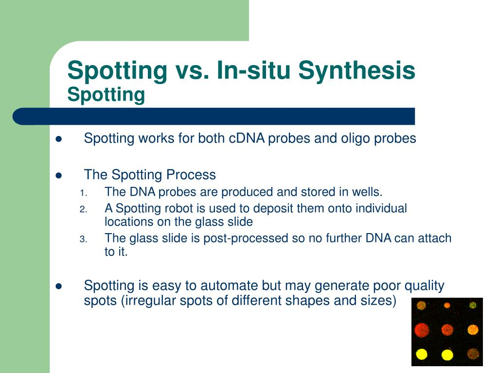 Spotting vs. In-situ Synthesis