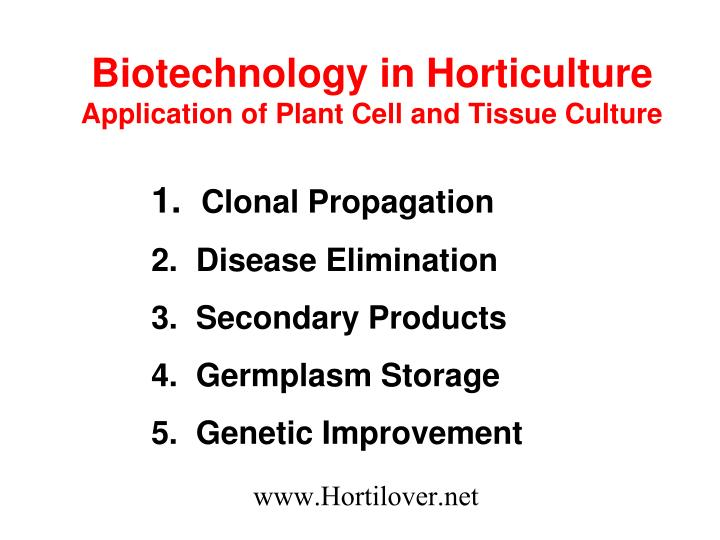 biotechnology in pop culture At the present time, more traditional aspects of biotechnology such as tissue culture have had an important impact.