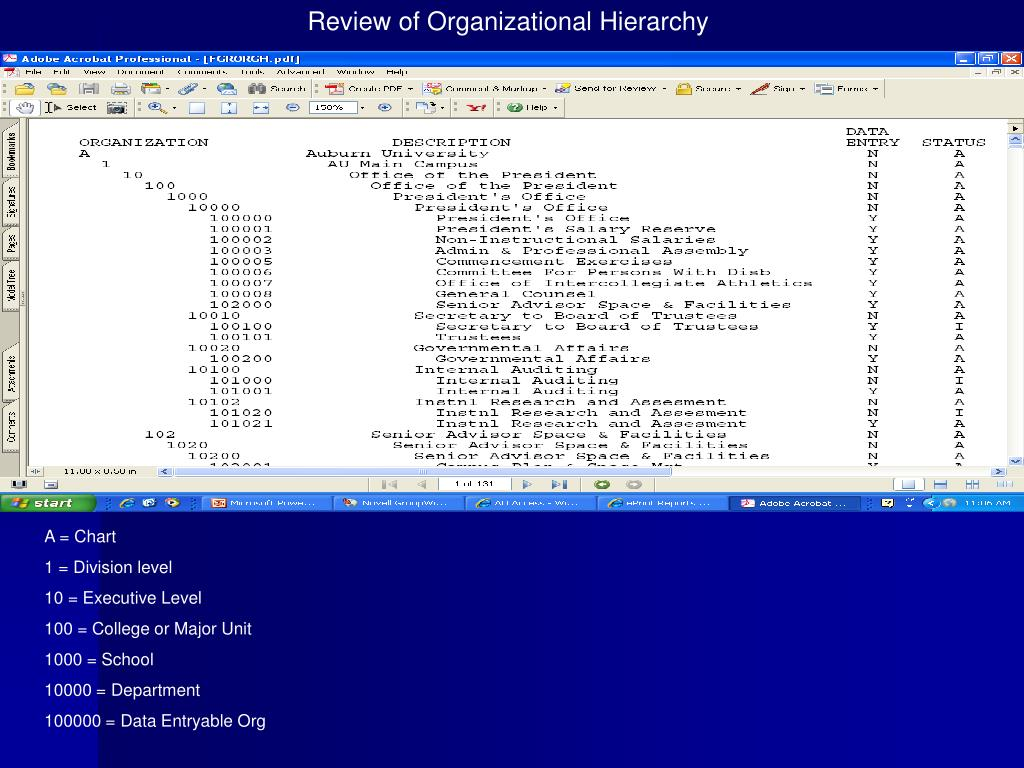Review of Organizational Hierarchy
