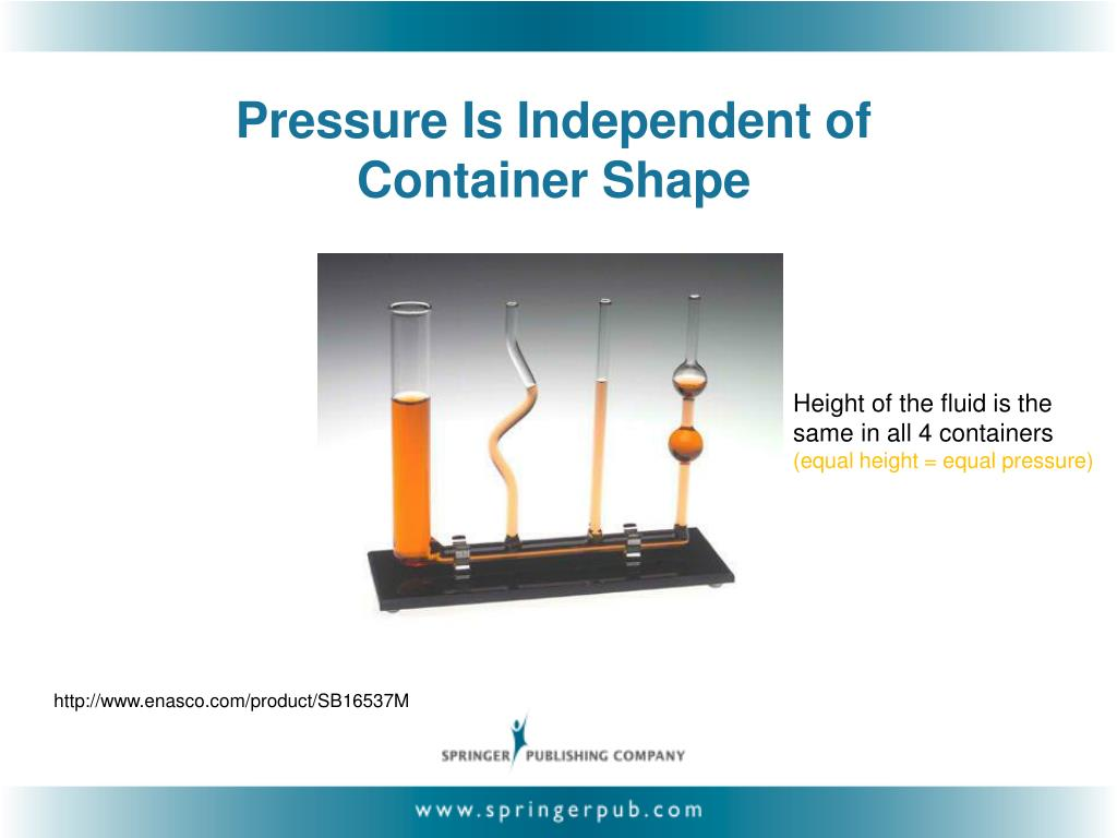 Pressure Is Independent of Container Shape