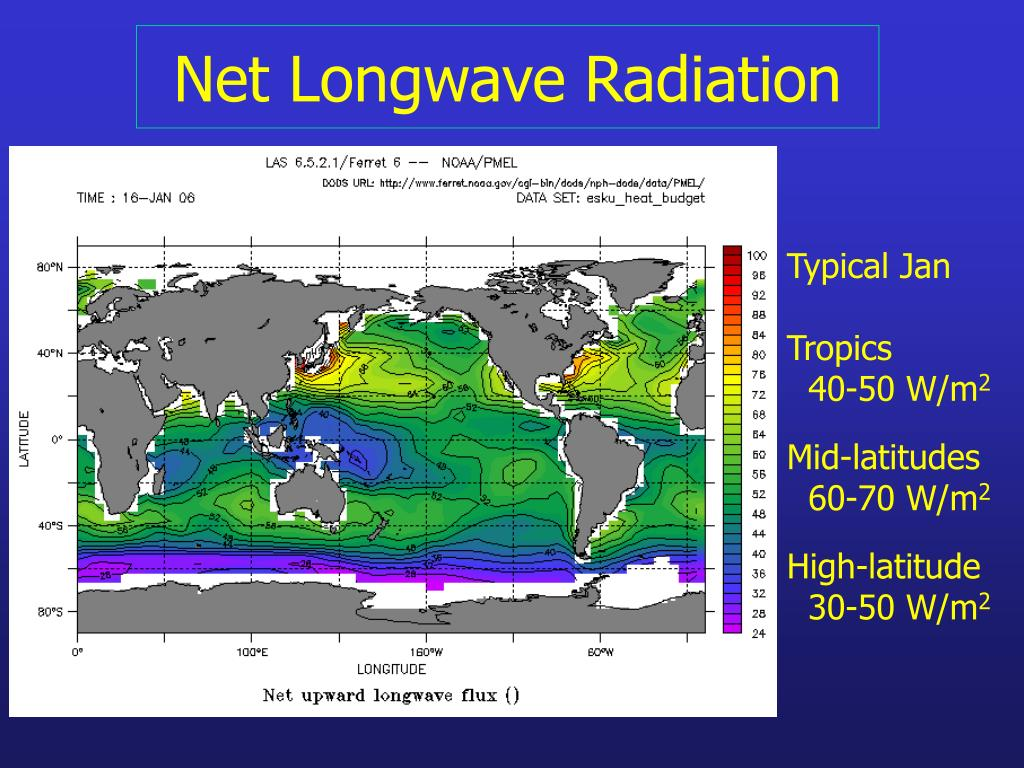 Net Longwave Radiation
