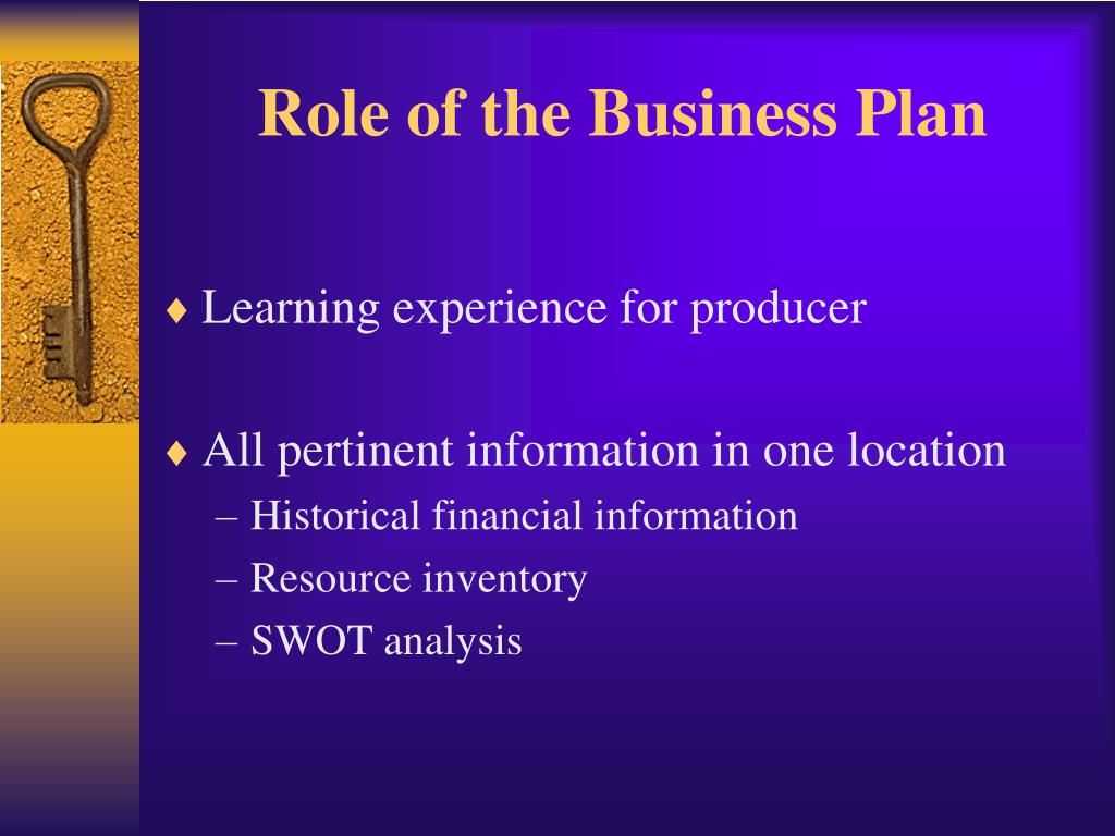 Role of the Business Plan