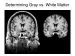 determining gray vs white matter