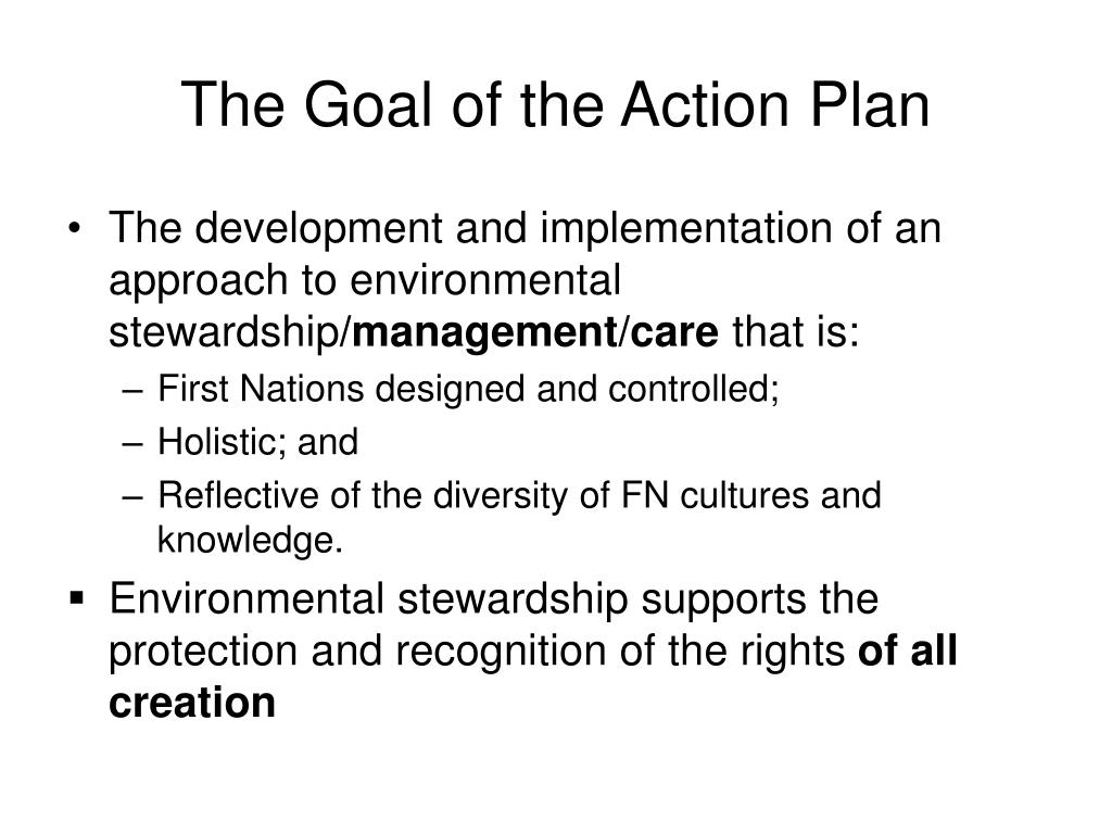 The Goal of the Action Plan