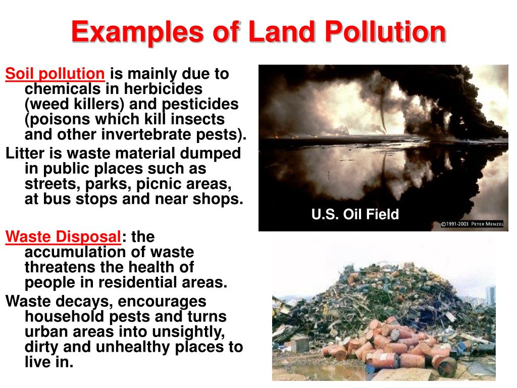 Examples of Land Pollution