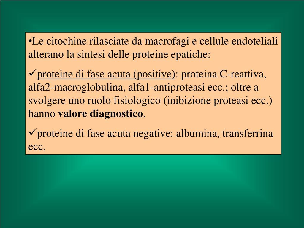 Le citochine rilasciate da macrofagi e cellule endoteliali alterano la sintesi delle proteine epatiche: