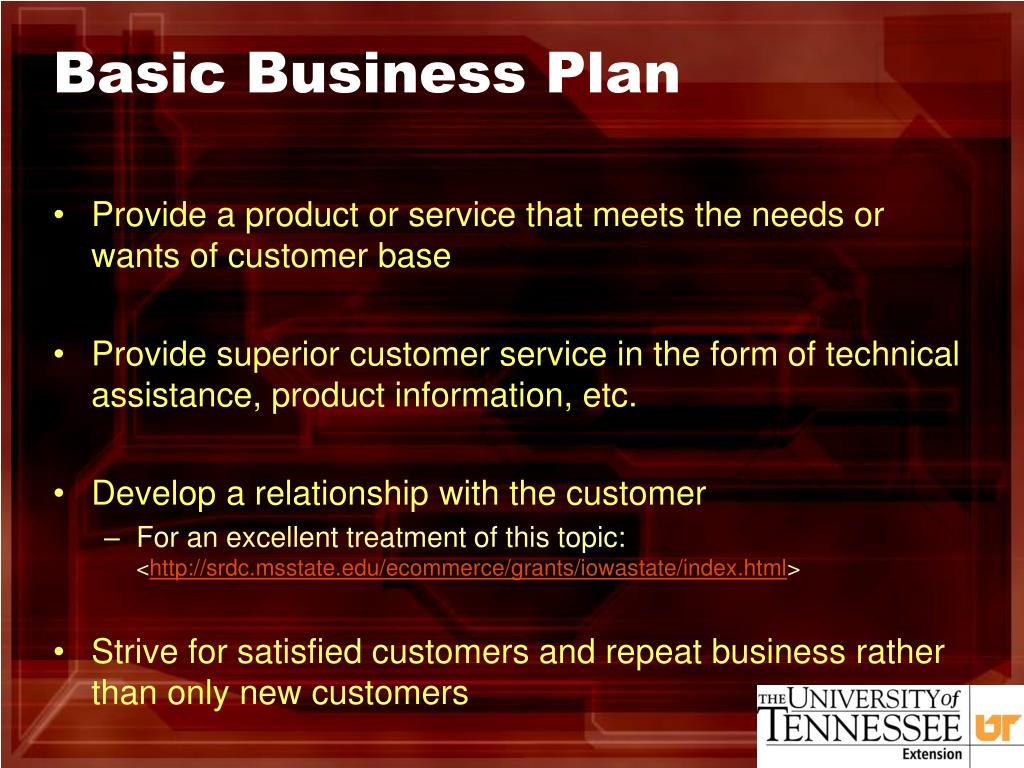 Basic Business Plan