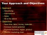 your approach and objectives