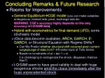 concluding remarks future research27