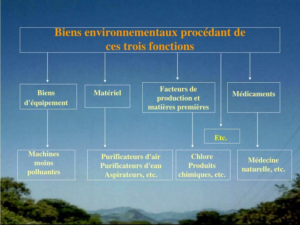 Biens environnementaux procédant de