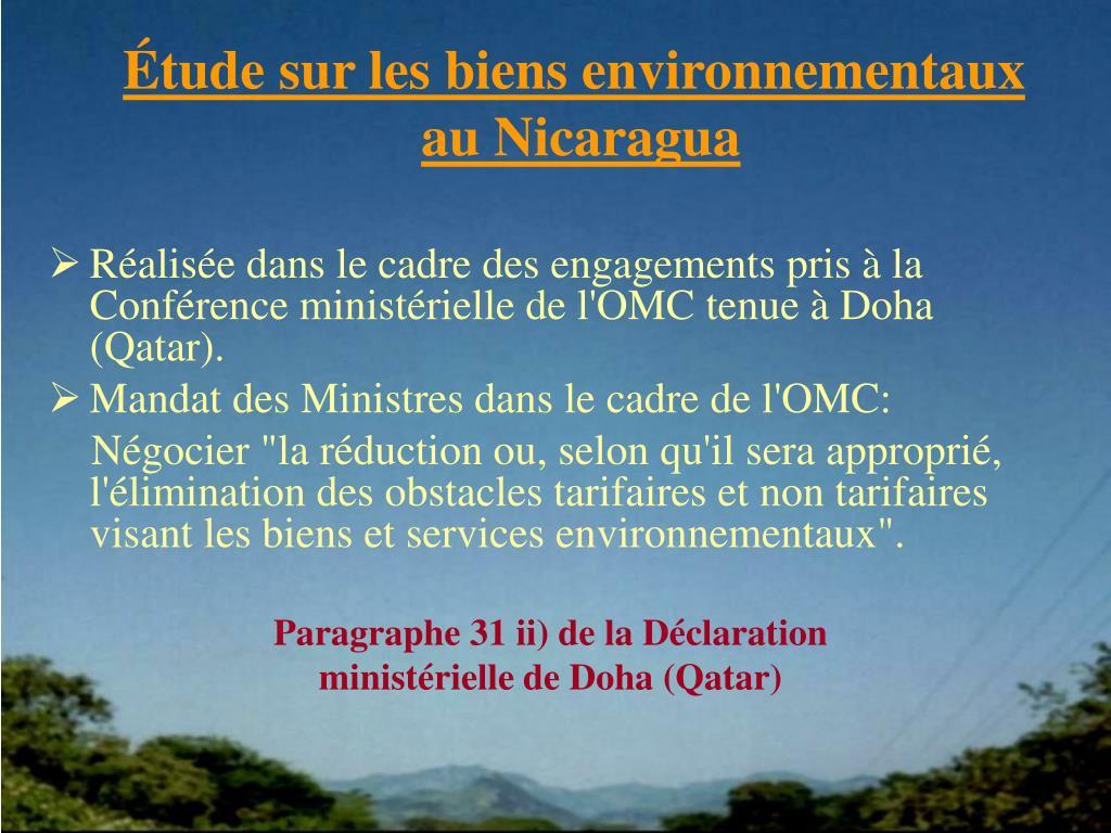 Étude sur les biens environnementaux