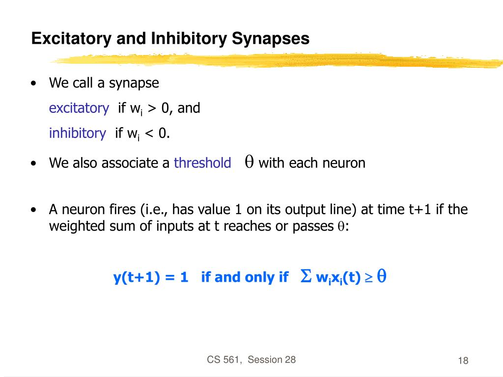 Excitatory and Inhibitory Synapses