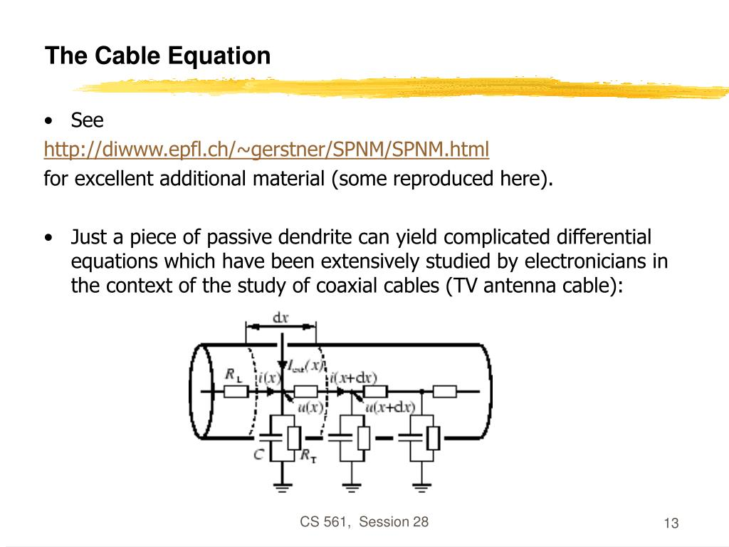 The Cable Equation