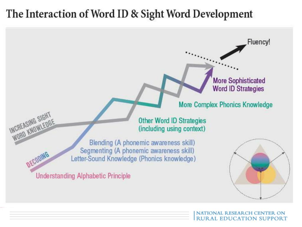 The Interaction of Decoding & Sight Words