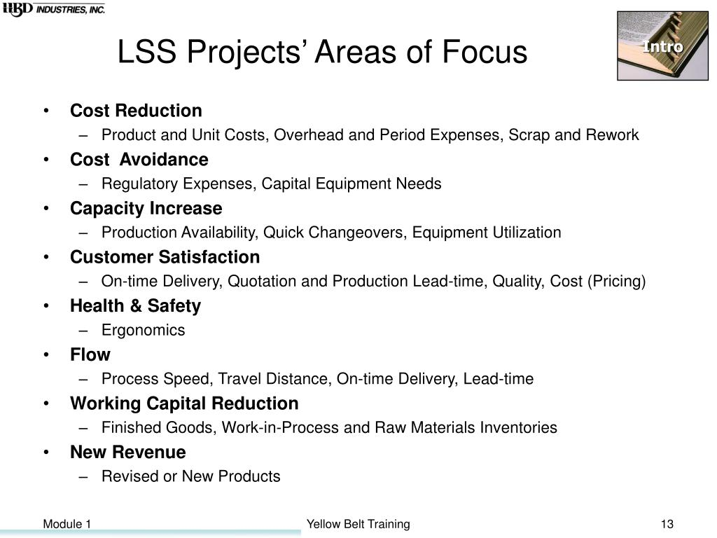 LSS Projects' Areas of Focus