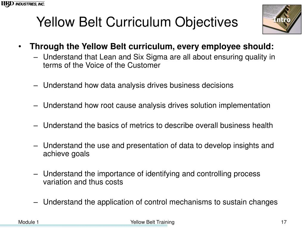 Yellow Belt Curriculum Objectives