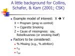 a little background for collins schafer kam 2001 csk