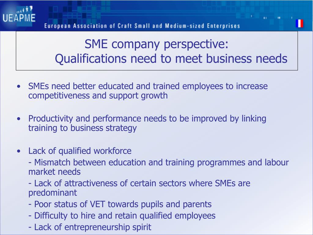 SME company perspective:
