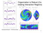 organization is robust co rotating interaction regions