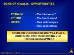 sons of gwalia opportunities