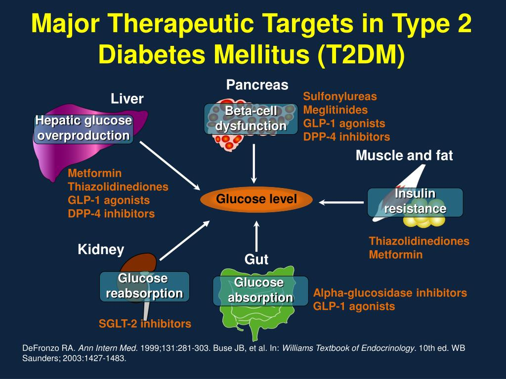 role of metformin for treatment of type ii diabetes mellitus Pharmacologic therapy for type 2 diabetes mellitus of type 2 diabetes mellitus the appropriate treatment of any a meal plays a much smaller role in.