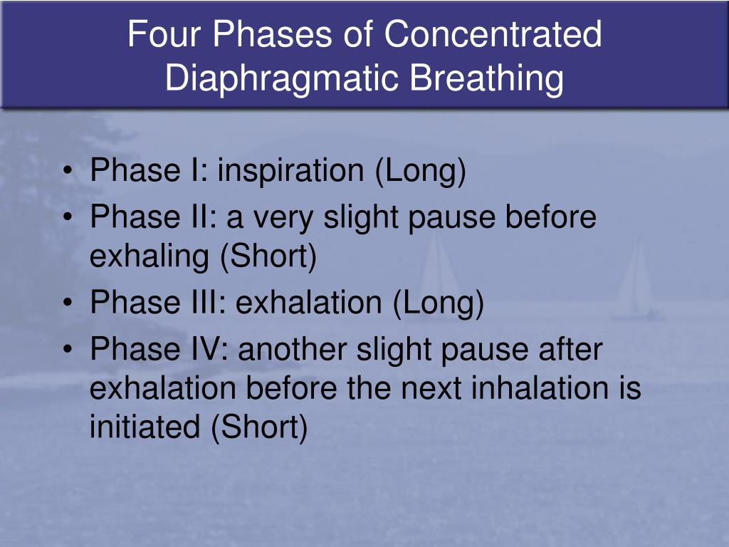 Four Phases of Concentrated Diaphragmatic Breathing