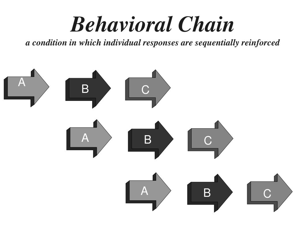 Behavioral Chain