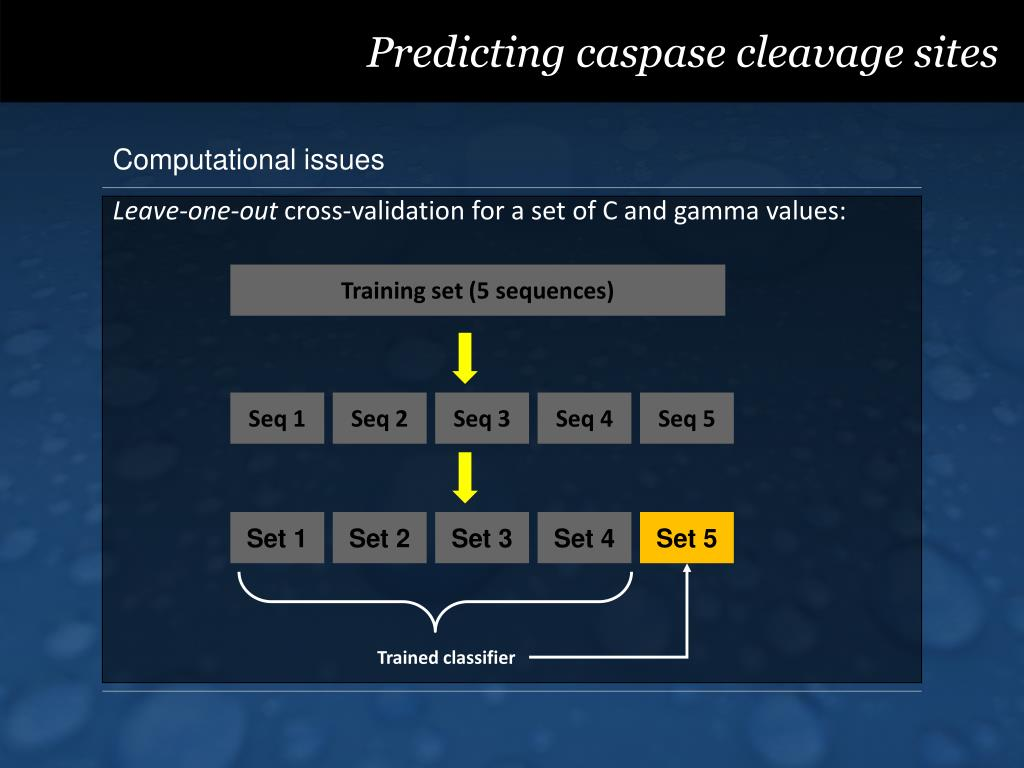 Predicting caspase cleavage sites