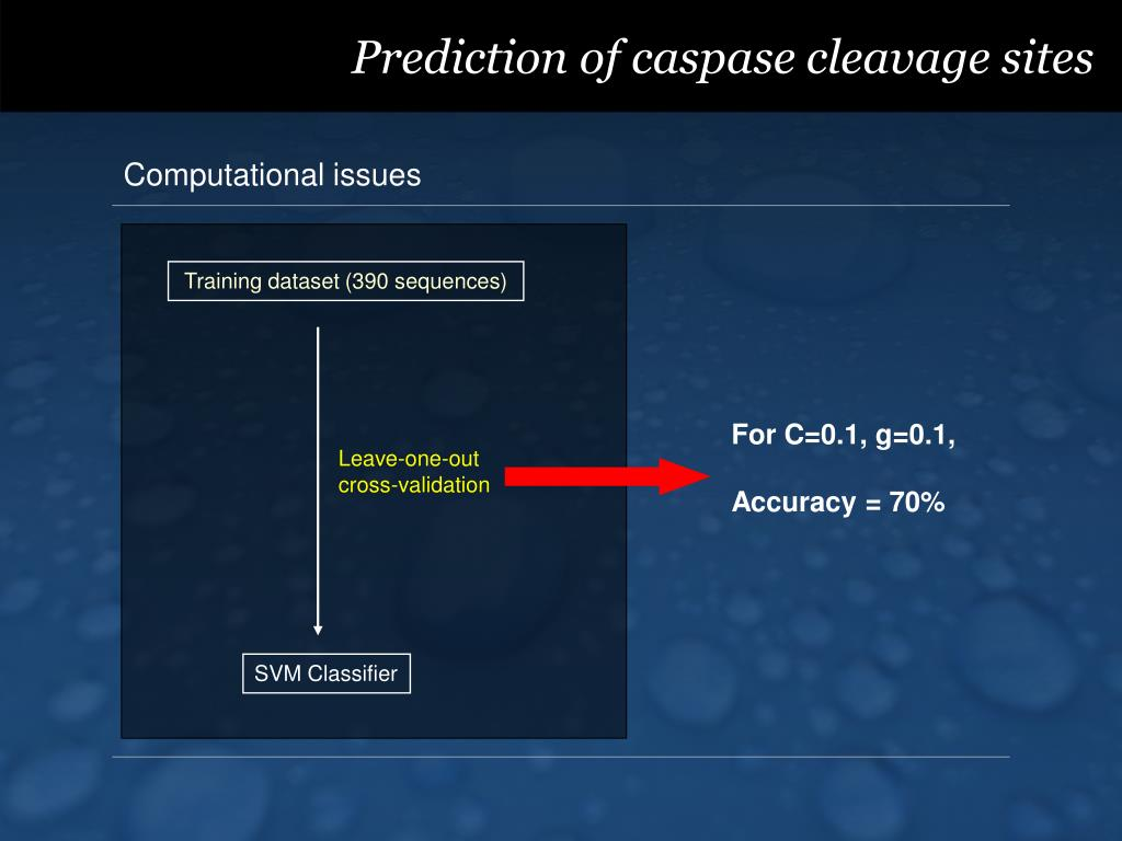 Prediction of caspase cleavage sites