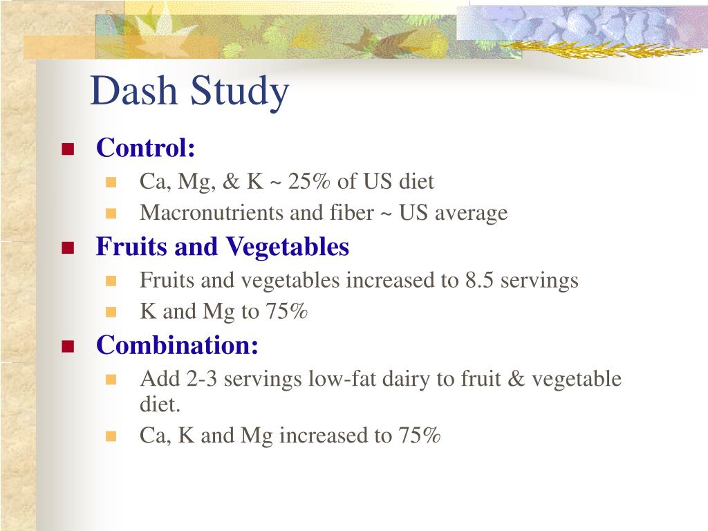 Dash Study