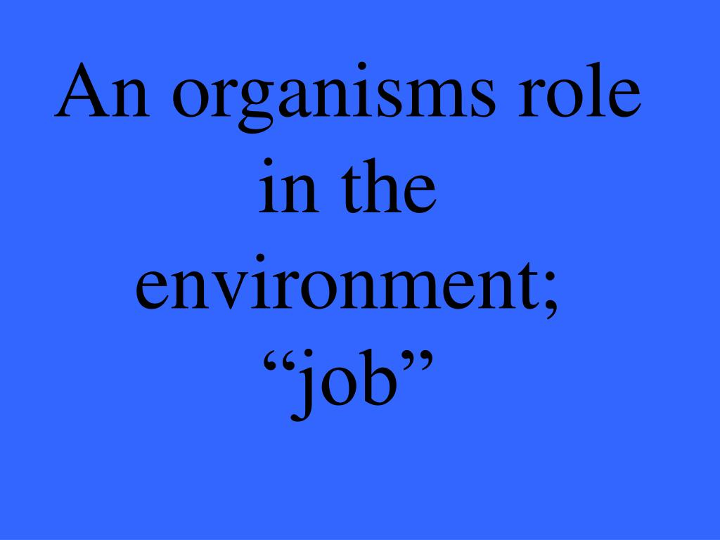 """An organisms role in the environment; """"job"""""""
