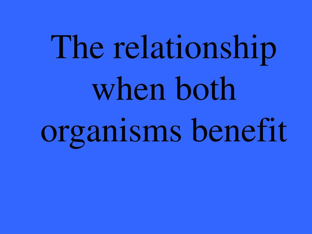 The relationship when both organisms benefit