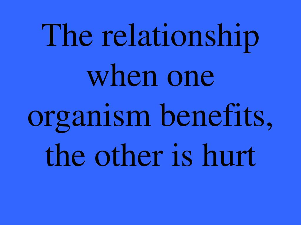 The relationship when one organism benefits, the other is hurt