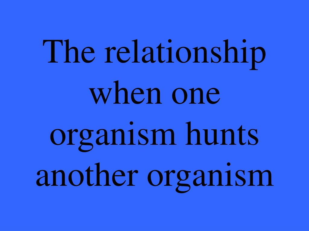 The relationship when one organism hunts another organism