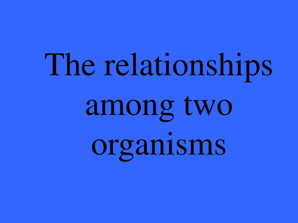 The relationships among two organisms