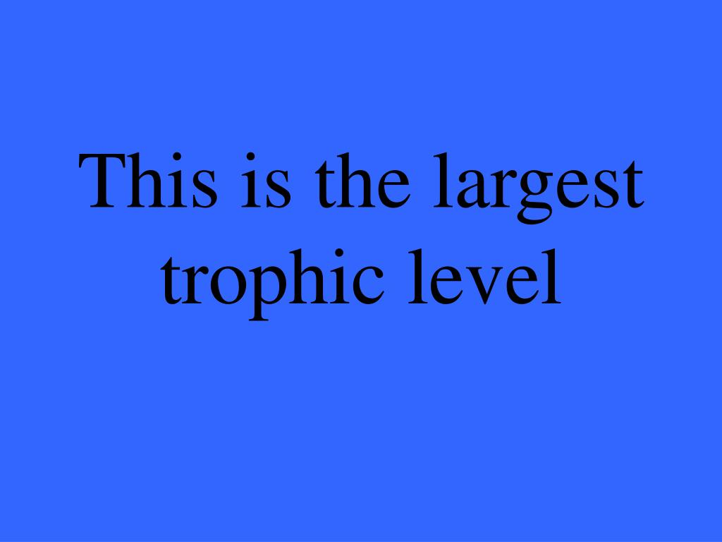 This is the largest trophic level