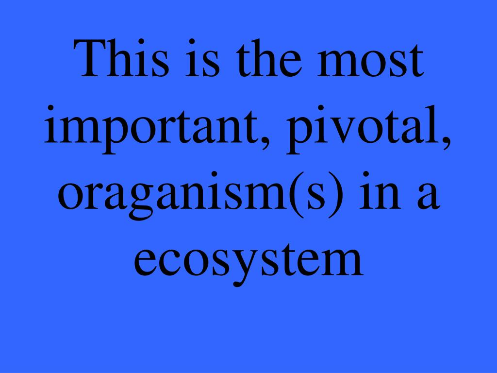 This is the most important, pivotal, oraganism(s) in a ecosystem