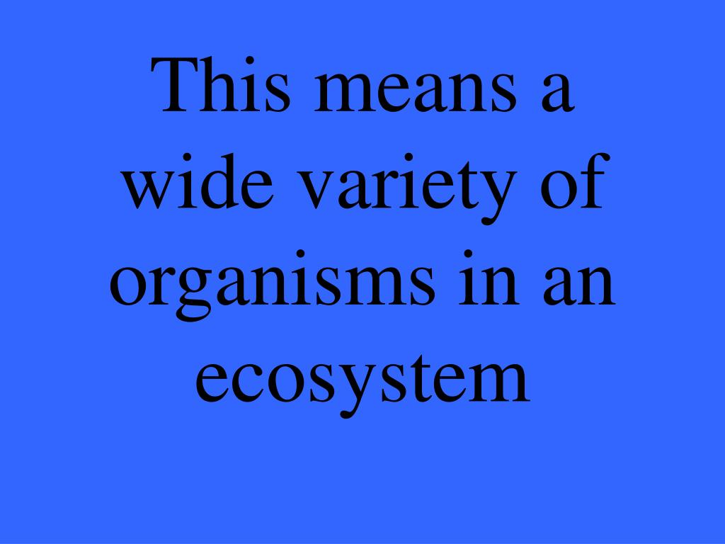 This means a wide variety of organisms in an ecosystem