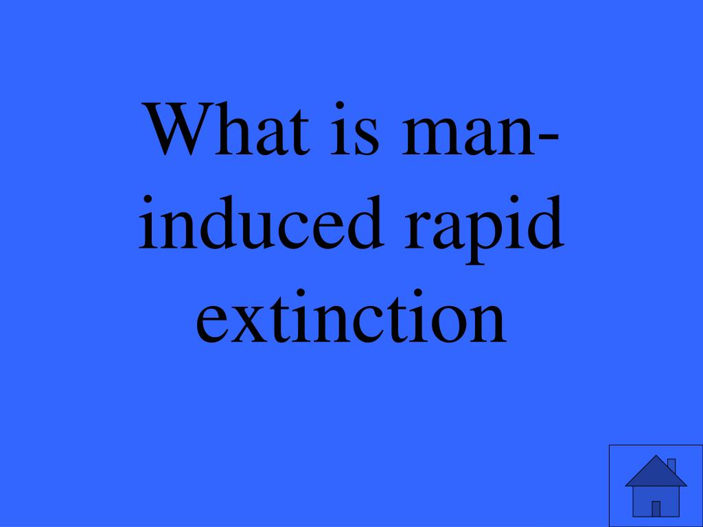 What is man-induced rapid extinction