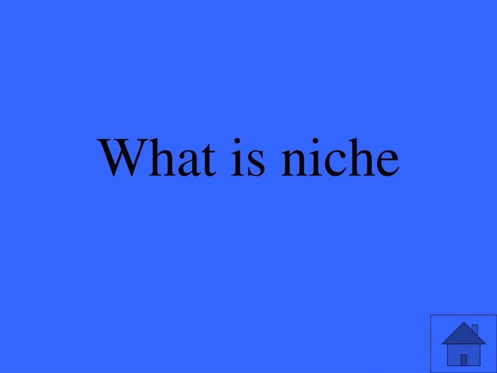 What is niche